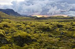 Surreal Landscape with wooly moss at sunset in Iceland Stock Photos