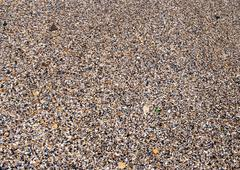 Sea sand, pebbles and seashells Stock Photos
