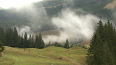 fog forest time laps 05 rauris - stock footage
