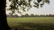Stock Video Footage of Park in London