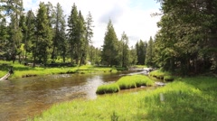 Enchanting River Flowing Through Park Stock Footage