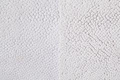 Two tone ray skin texture Kuvituskuvat