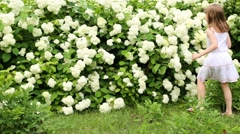 Cute little girl in white goes to bush and sniffs flowers Stock Footage