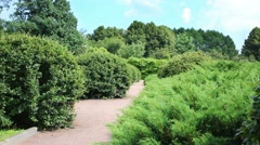 Sandy walkway in park with green decorative shrubs Stock Footage