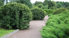 Six children run on walkway among green bushes in summer park Stock Footage