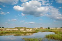 Stock Photo of marsh landscape with beautiful sky