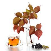 Tea with rosehip Stock Photos