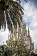 the steeple of the cathedral of the holy cross hidden behind a palm tree - stock photo