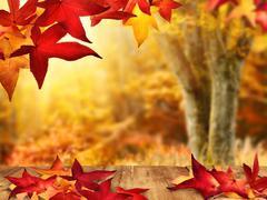 Scenic autumnal view Stock Photos