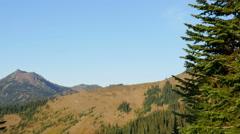 Olympic National Park, Wilderness, Trees, Peaks, 4K, UHD Stock Footage
