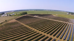 Large Solar Panel Farm Aerial Fly Over Stock Footage