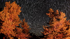 Time lapse of stars behind mountain Tarahtash, Yalta, Crimea Stock Footage