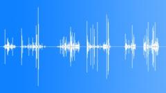 Eating Bones Sound Effect