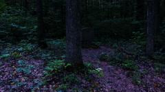 Scary Cemetery Graveyard Stone Dark Stock Footage