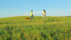 Children and dog walking in the field, childhood, together, camera movement Stock Footage
