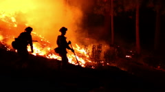 2 fire fighters walking through forest fire Stock Footage