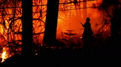 Fire Fighter spraying water on forest fire Stock Footage