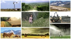 Agriculture montage, people, animals and products Stock Footage