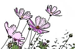 abstract pink daisy flowers - stock illustration