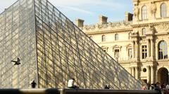 Bird flying and the Louvre in Paris Stock Photos