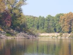 Ukrainian nature, river Stock Footage