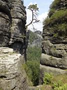 saxon switzerland - stock photo