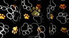 Animal Tracks Triplet Stock Footage