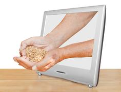 farmer handful with grains leads out tv screen - stock illustration