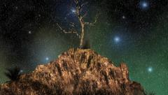Rock and tree in front of a shiny night sky with stars Stock Footage