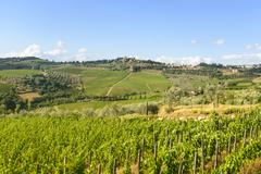 chianti, tuscany - stock photo