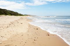 Coastline with lush vegetation and waves Stock Photos