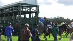 4k Unlucky Horse Racing start - horse runs without jockey - stock footage