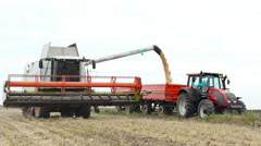 Soybean agriculture  ,combine loading the trailer tractor  Stock Footage