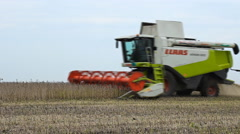Soybean Field combine Tractor in harvest time lapse Stock Footage