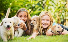 young girls with baby puppies - stock photo
