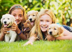 Young girls with baby puppies Stock Photos