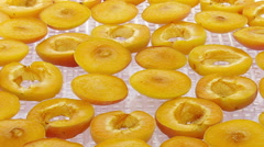 Time-lapse of drying apricot 1x1 Stock Footage