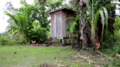 Wooden outhouse/hut in Village Stock Footage