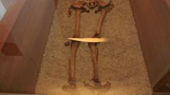 Old skeleton preserved Panoramic Stock Footage