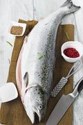 fresh salmon carcass - stock photo
