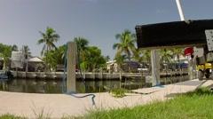 Green iguana on boat dock on big pine key in the florida keys Stock Footage