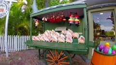 Conch shells and tourist souvenirs on a cart in key west florida keys Stock Footage