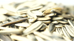 Organic sunflower seed. Camera rotation surrounding the object. Stock Footage