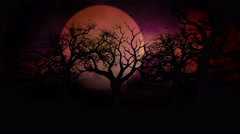 Spooky Midnight Forest 2 Stock Footage