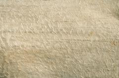 Dry wood surface - stock photo