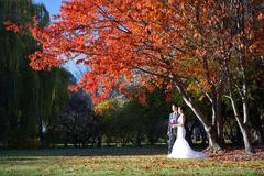 Asian wedding couple in nature pictures Stock Photos