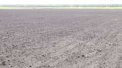 Freshly plowed black earth field day Stock Footage