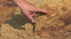 Archaeological excavations in the limestone, HD Stock Footage