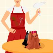Stock Illustration of Professional dog grooming for Yorkshire Terrier