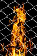 Fire in a metal grid Stock Photos